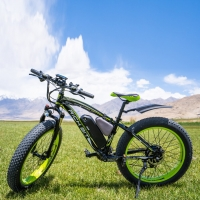 RichBit RT-012 Plus 21s Electric Bike With Computer Speedometer European delivery Powerful Electric MTB Bike 17AH 1000W eBike
