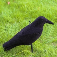 Hot Selling Practical Plastic Crow Decoy Hunting BlackCoated Full Body Stand Bodied Crow Jackdaw Bird for Hunting Shooting Decoy