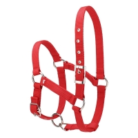 6MM Thickened Horse Riding Durable Horse Head Collar Halter Bridle Horse Riding Equipment Halter Horse Accessories